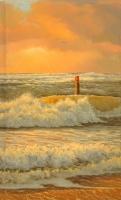 Duin en Strand_3
