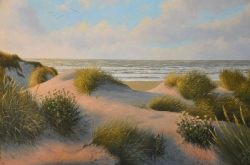Duin en Strand / Dune & Seascapes