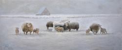 Winter op Texel / Winter on Texel