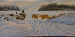 Winter op Texel_10