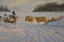 Winter op Texel_6