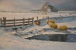 Winter op Texel_2